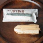 弥生銅剣:島根県出雲市